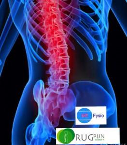 rugpijnnetwerk, voor lage rugklachten en nekklachten bent u op het juiste aders bij ME Fysio